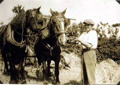 William Stone Higher Farm before 1923