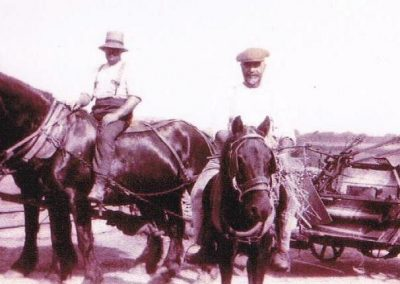 Thomas Henry Tucker & son Ernest Tucker on horses with binder. Early 1920s