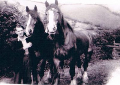 Jock Gordon with Fred Tripp's horses 1945