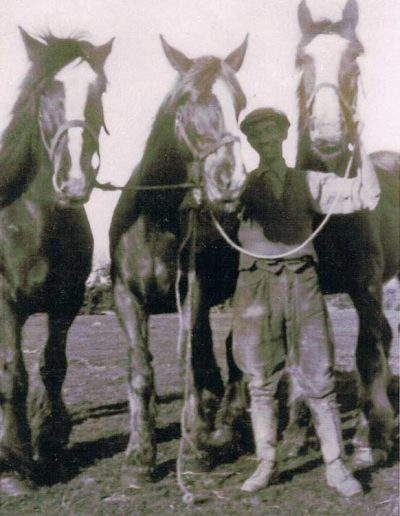 Harold Hannaford with horses late 1930s