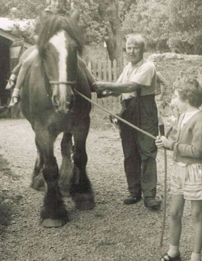 Garlands Farm Mr Fred Tripp with horse, Prince, children unknown. Dog called Fly. Brenda Jeffery learnt to drive in the car in the garage. Child unknown. Circa 1954