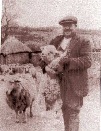 Ernest Tucker in Locks Court with lamb and sheep, early 1930s
