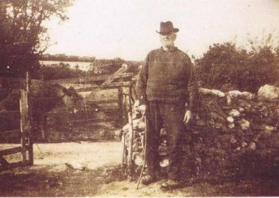 Robert A Phillips  Lower Vinivers Gate East Prawle aged 79 getting cows in for his son-in-law, Richard Albert Partridge, 1929