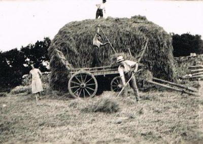 Manor Farm, South Allington, Torie Baker, Edward Andrew Baker