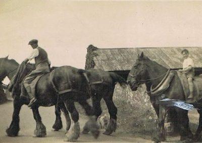 Horses coming out of High House Farm - John Lewis Elliott, Florence Elliott/Wotton's elder brother, Derek Wotton on Bill