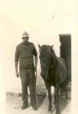 Albert Rundle at East Prawle with pony