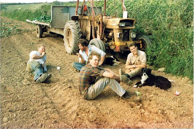 Back row Nick Arundell and George Currie, front Stephen Tucker, Richard Tucker on a break sitting with dog ifrom planting cauliflowers