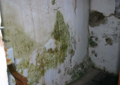 Damp (prevalent throughout the Church)
