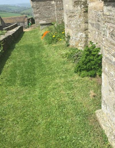 Front of Church path with grass