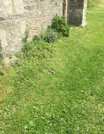 Front of church path also with grass